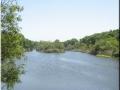 San Diego River.JPG