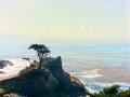 Calif_coast-2.jpg